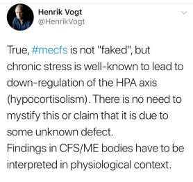 Vogt; ME må forstås psykologisk